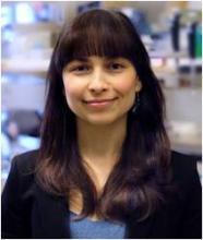 Dr. Katharina Rothe